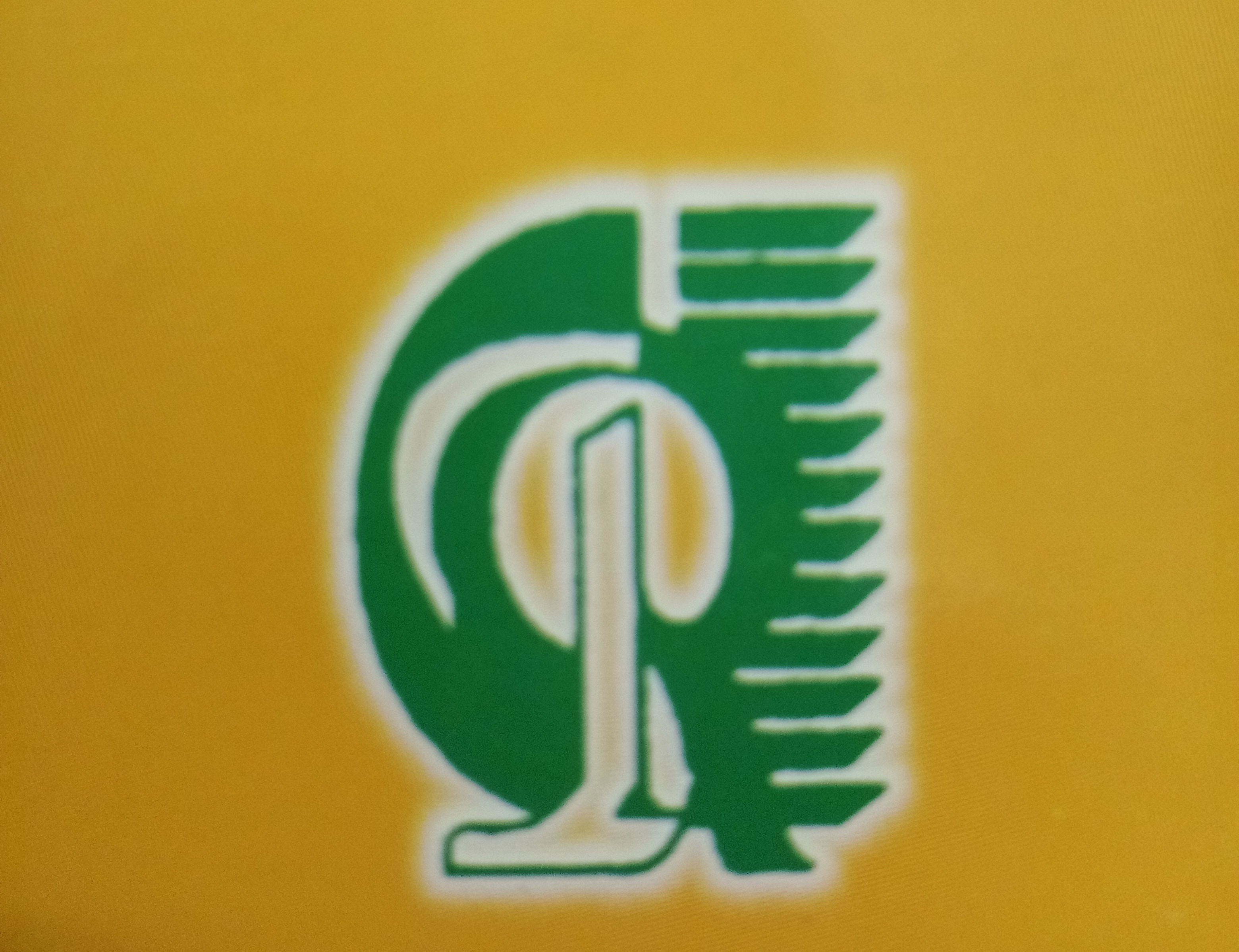 Logo of Raj Classes in Kota